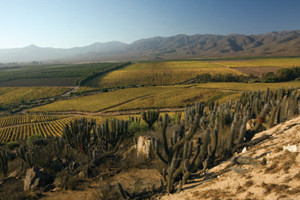 The Limarí Valley is known for its cool-climate Chardonnay and Syrah.