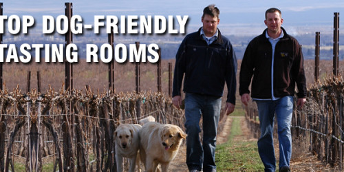 Dog-Friendly Tasting Rooms