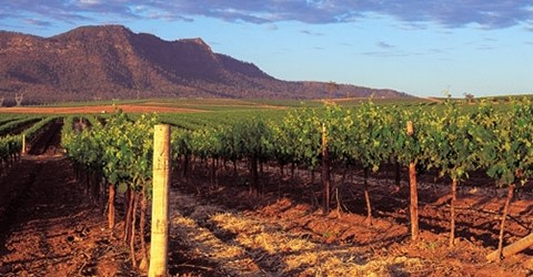 Wine Travel Destination 2013: Hunter Valley, New South Wales, Australia