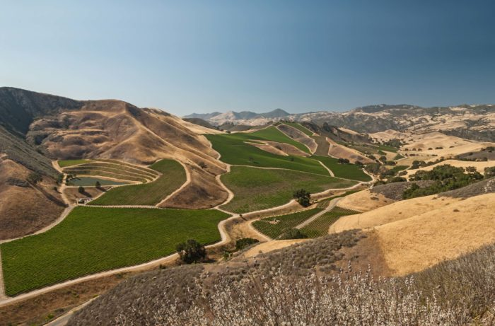 Discover the Cabernet Sauvignon Wonderland of Happy Canyon