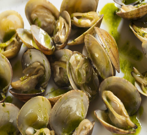 Clams in Parsley Sauce