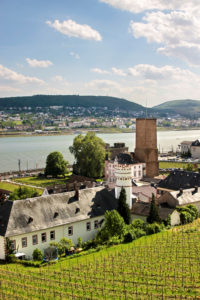 View on Ruedesheim in the Rheingau, Hesse, Germany / Getty