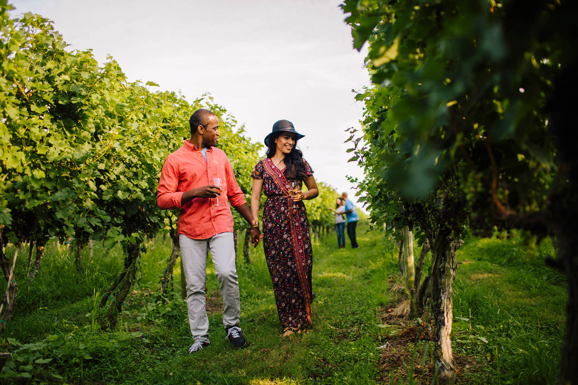 Touring Chatham Vineyards with SouthEast Expeditions