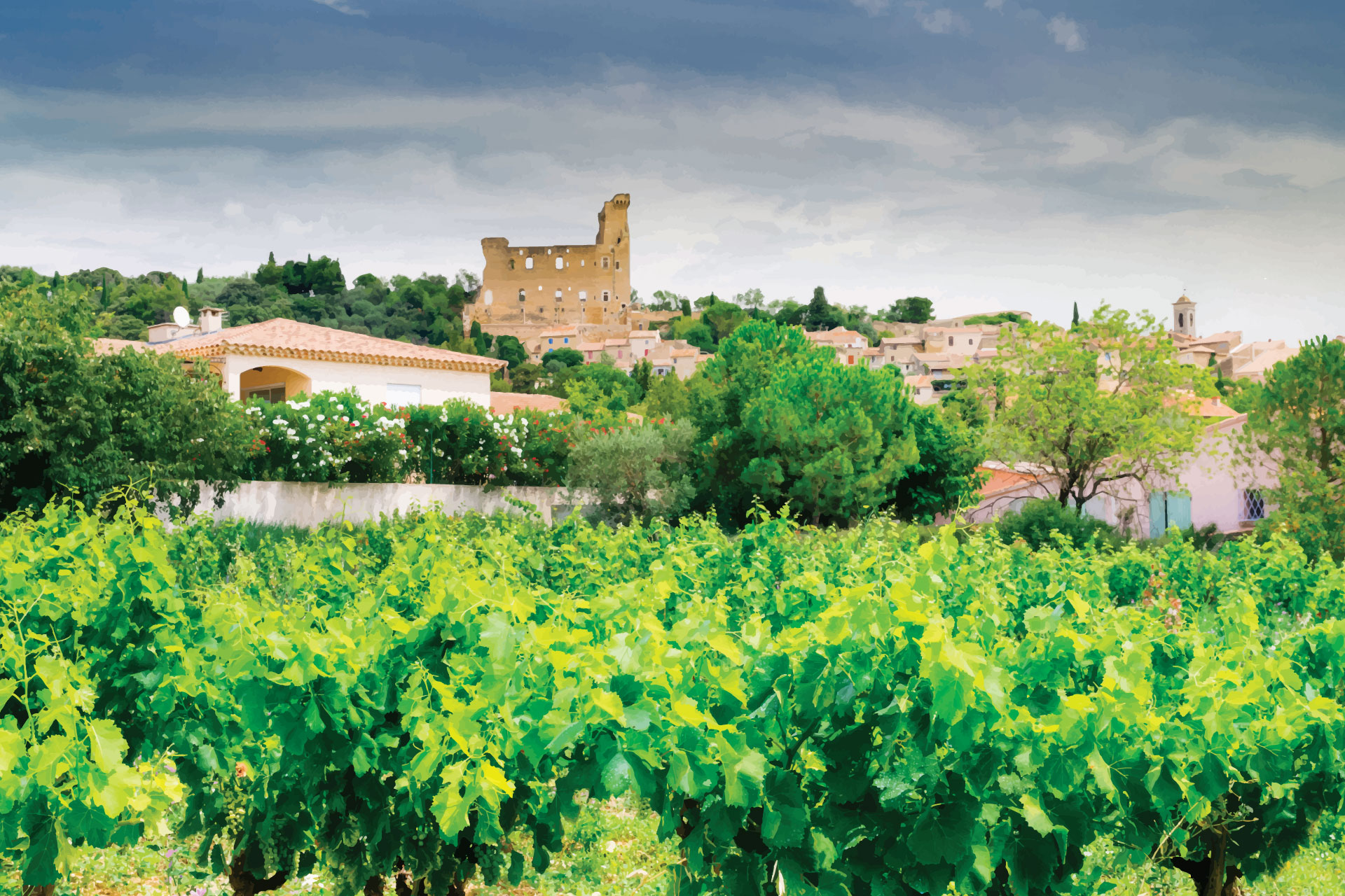 Vineyard and buildings in Châteauneuf-du-Pape