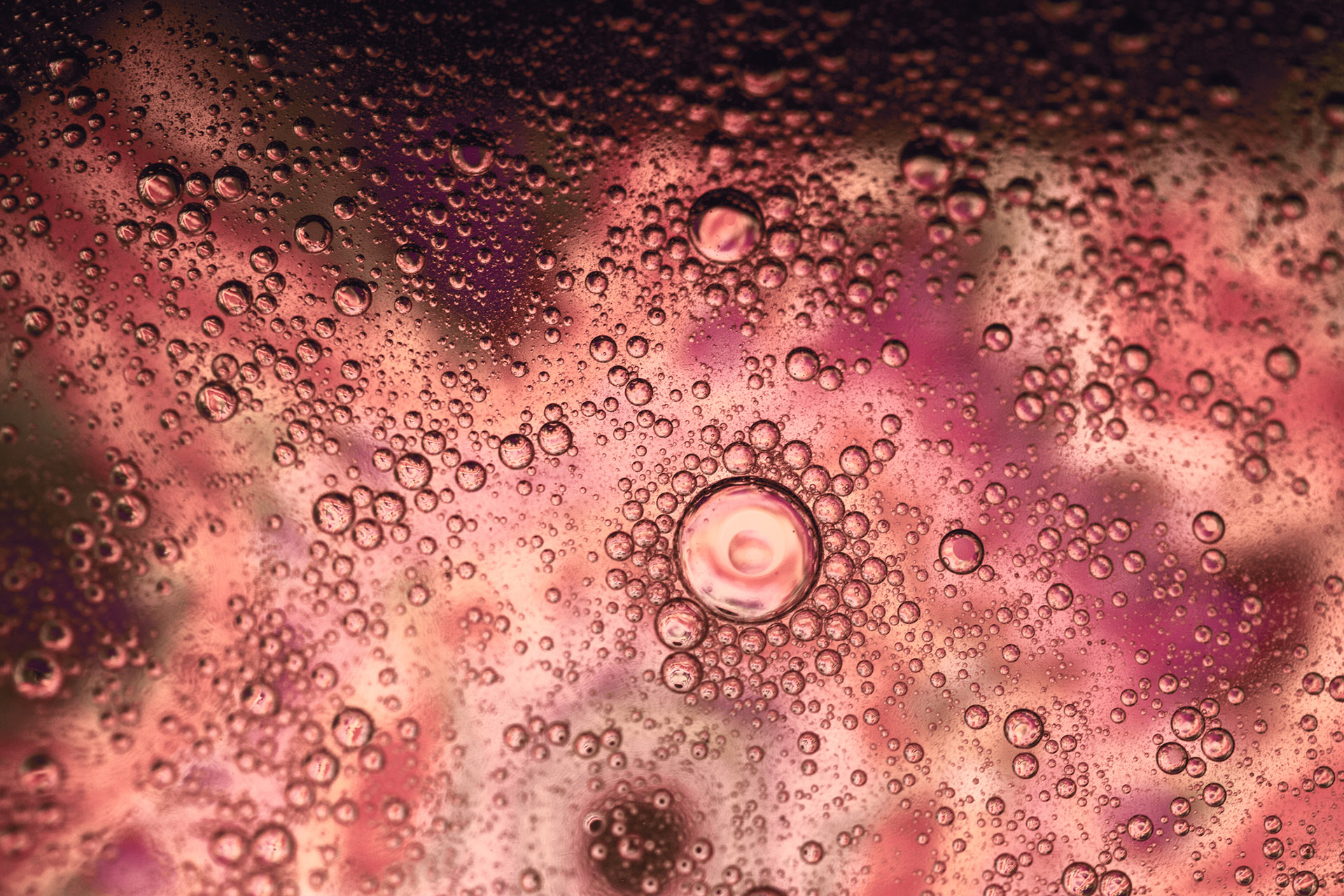 Close-up of bubbles in sparkling wine