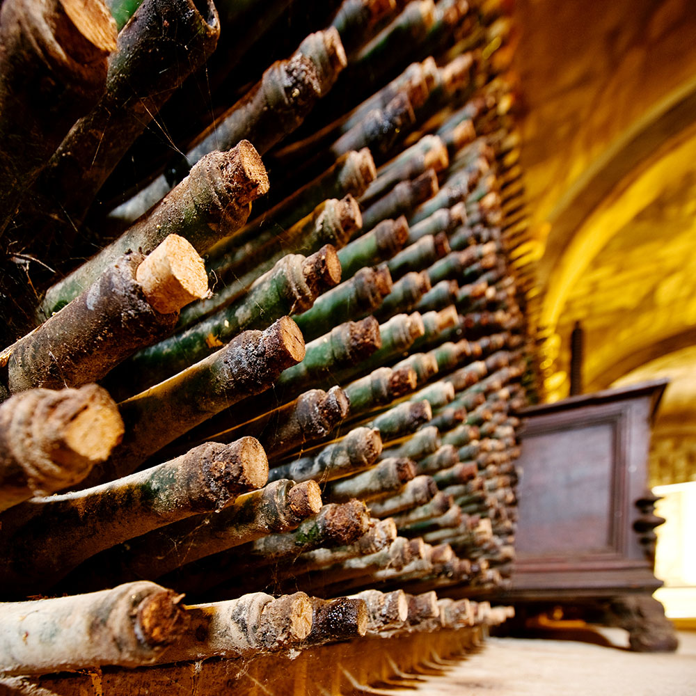 Rows of old wine bottles