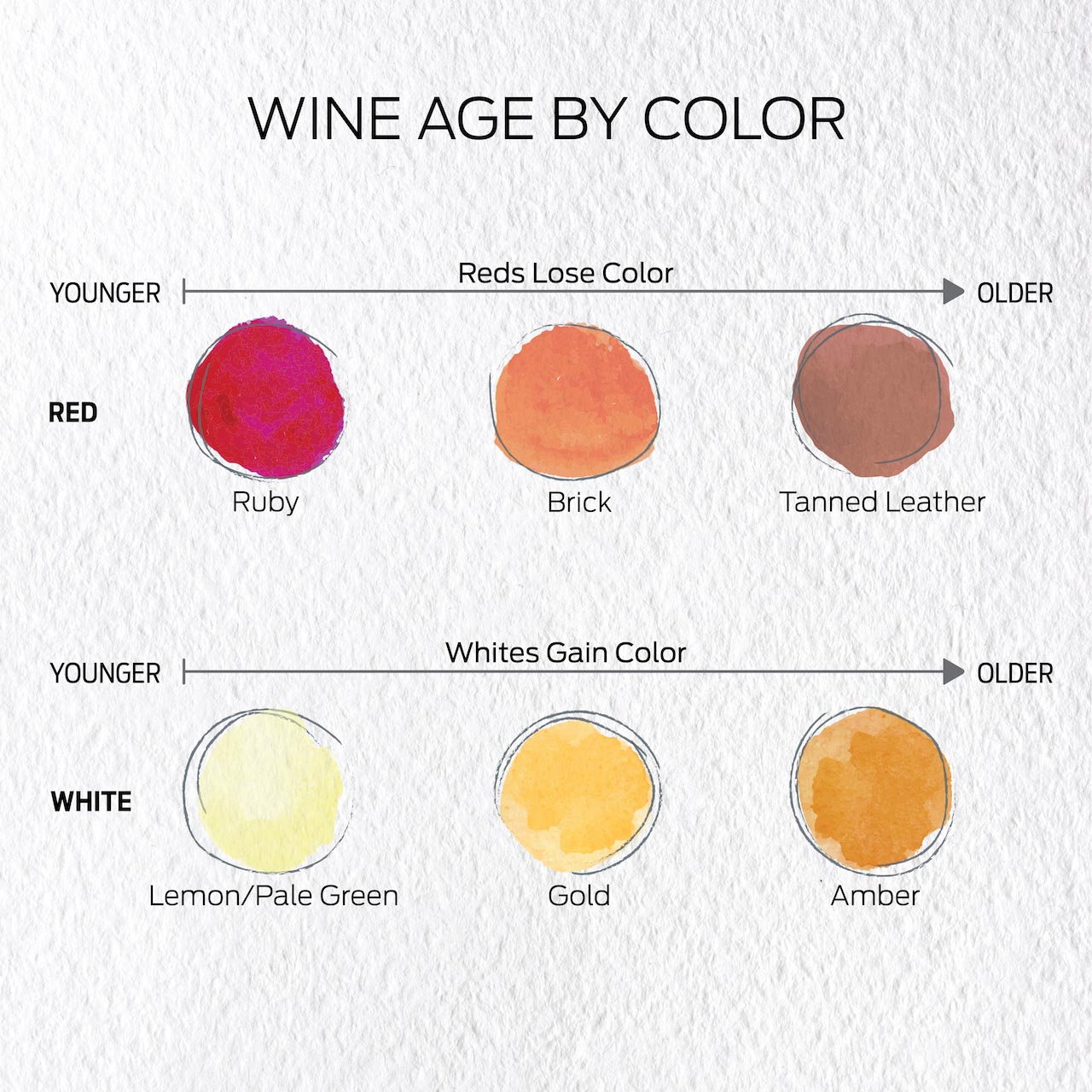 Red wine colors from young to old: Ruby, brick, tanned leather. White wine colors from young to old: Lemon/pale green, gold, amber