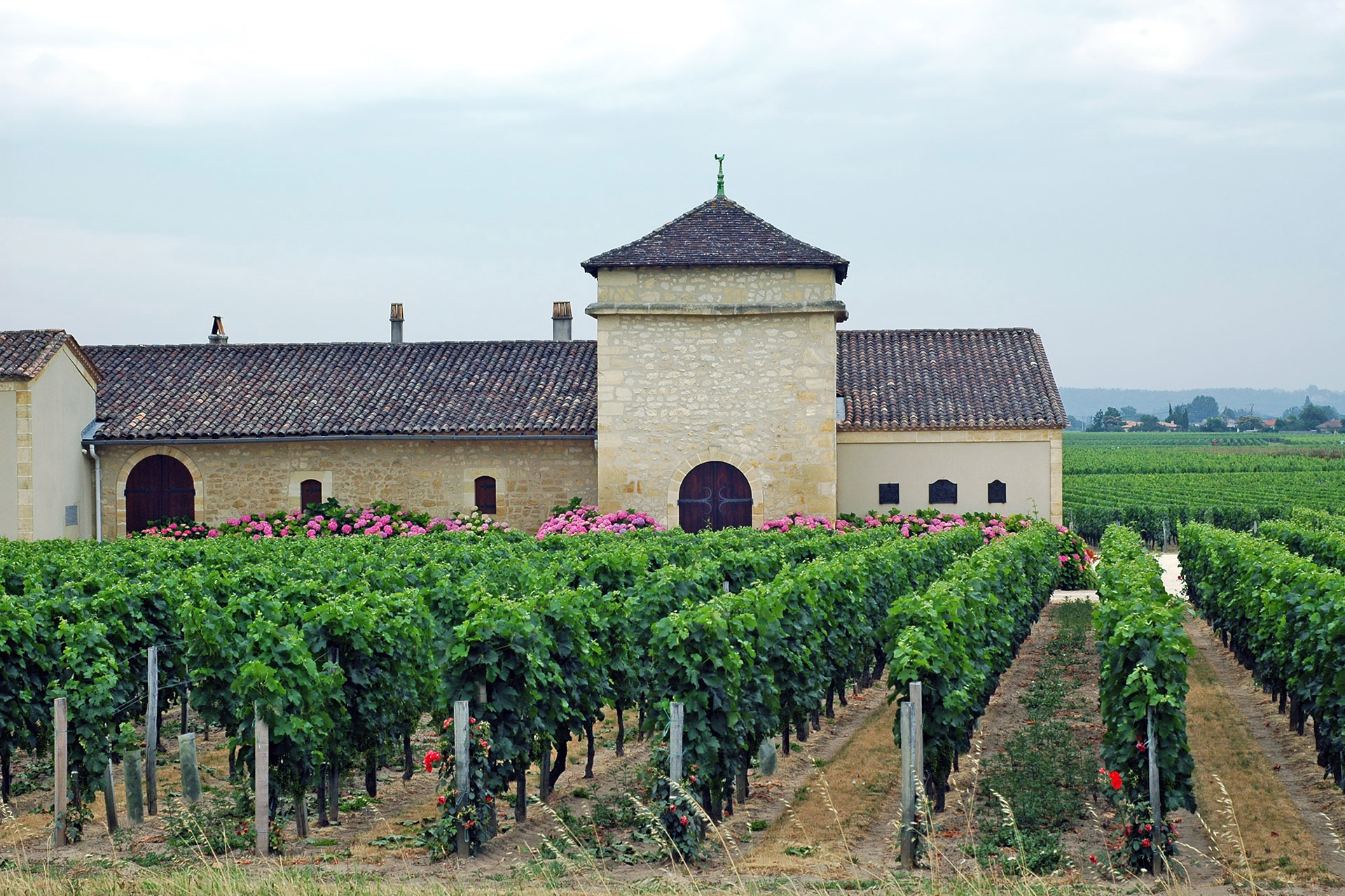 Vineyard and farmhouse in Bordeaux, France / Getty