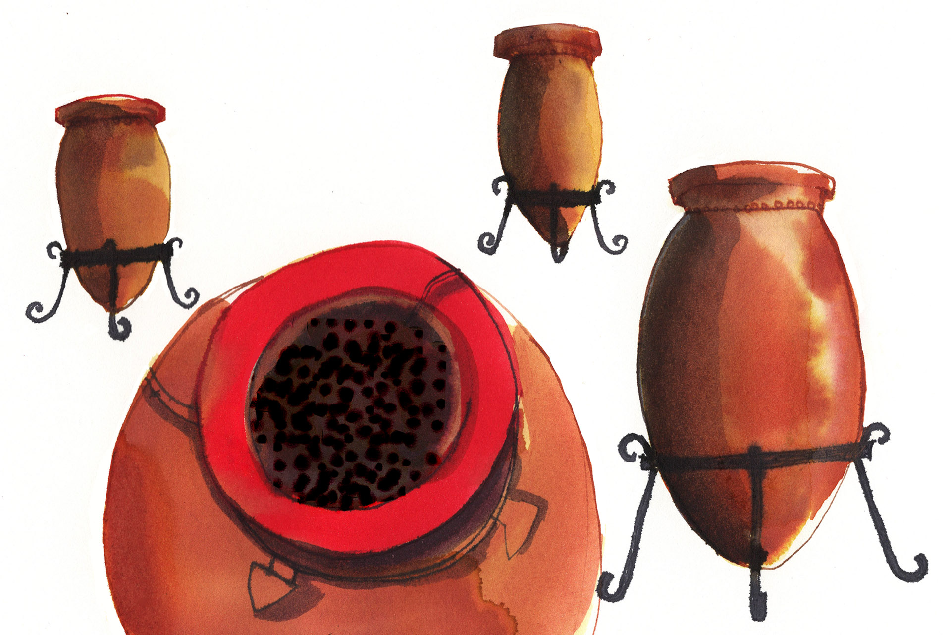 Open-air amphora oxidized wine illustration