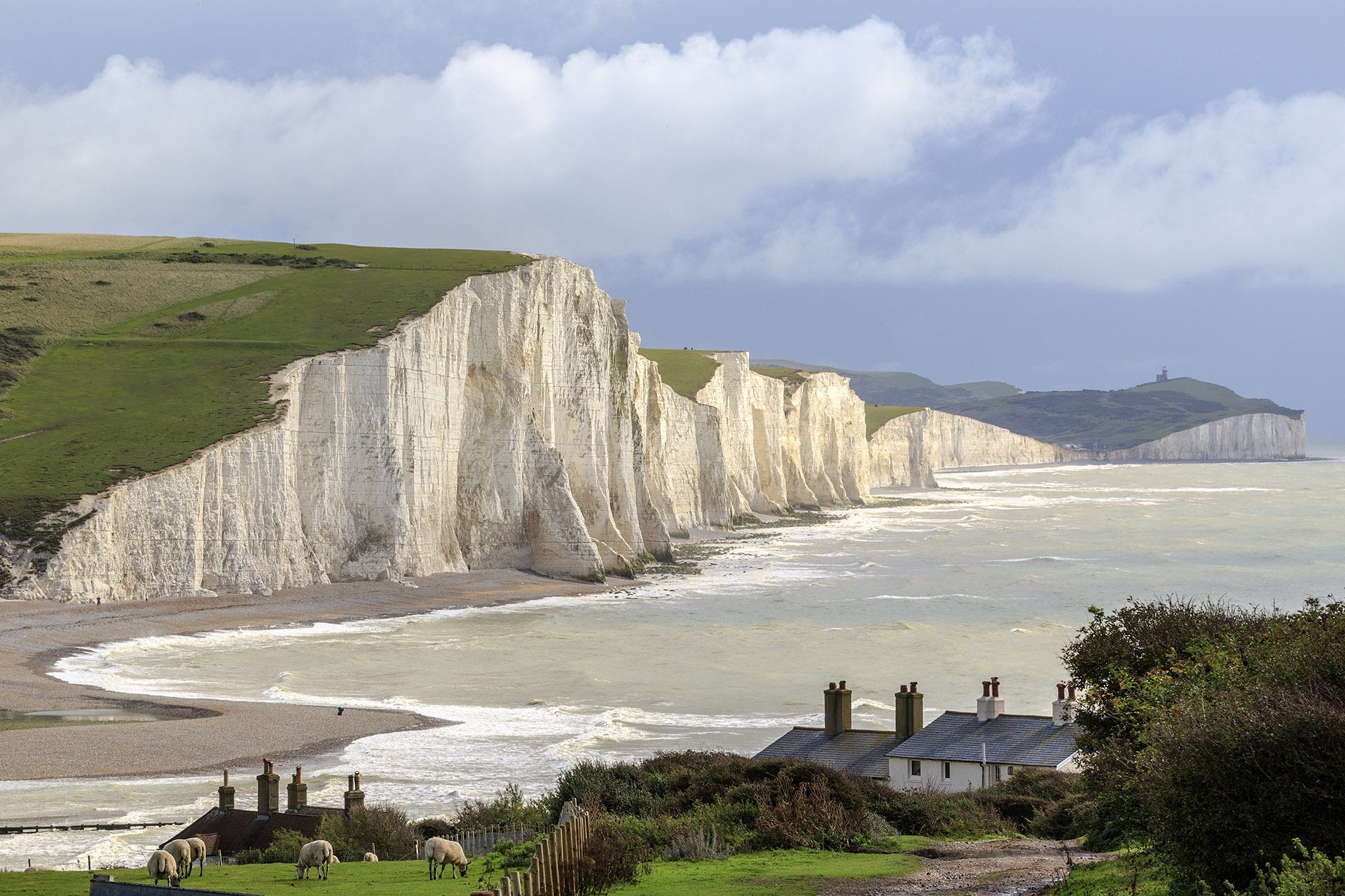 Green grass-covered snow white cliffs next to a beach and ocean