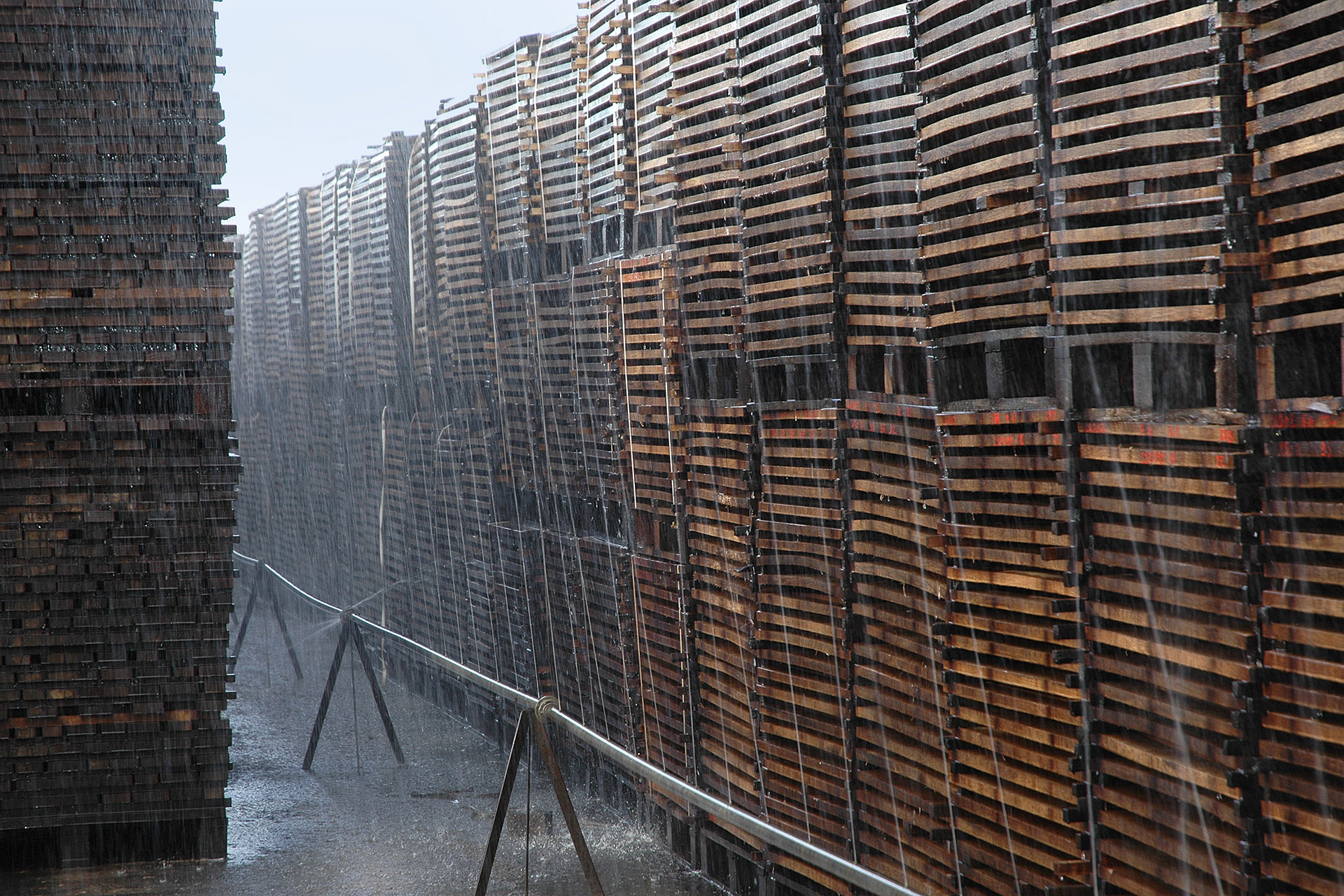 Pallets of oak panels being weathered by water
