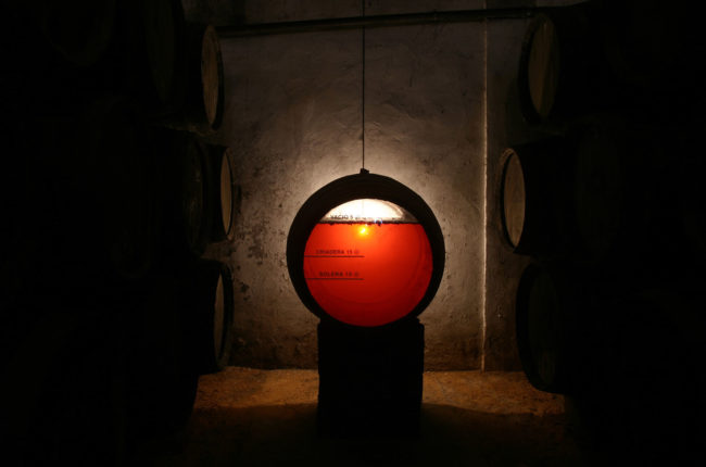sherry wine barrel in old cellar