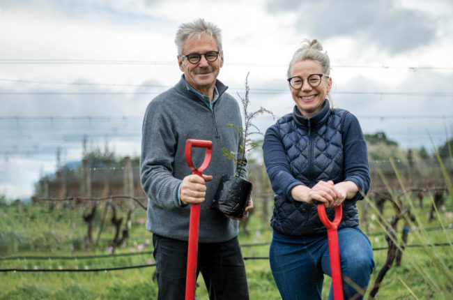 Clive Paton, founder, and Helen Masters, winemaker, of Ata Rangi