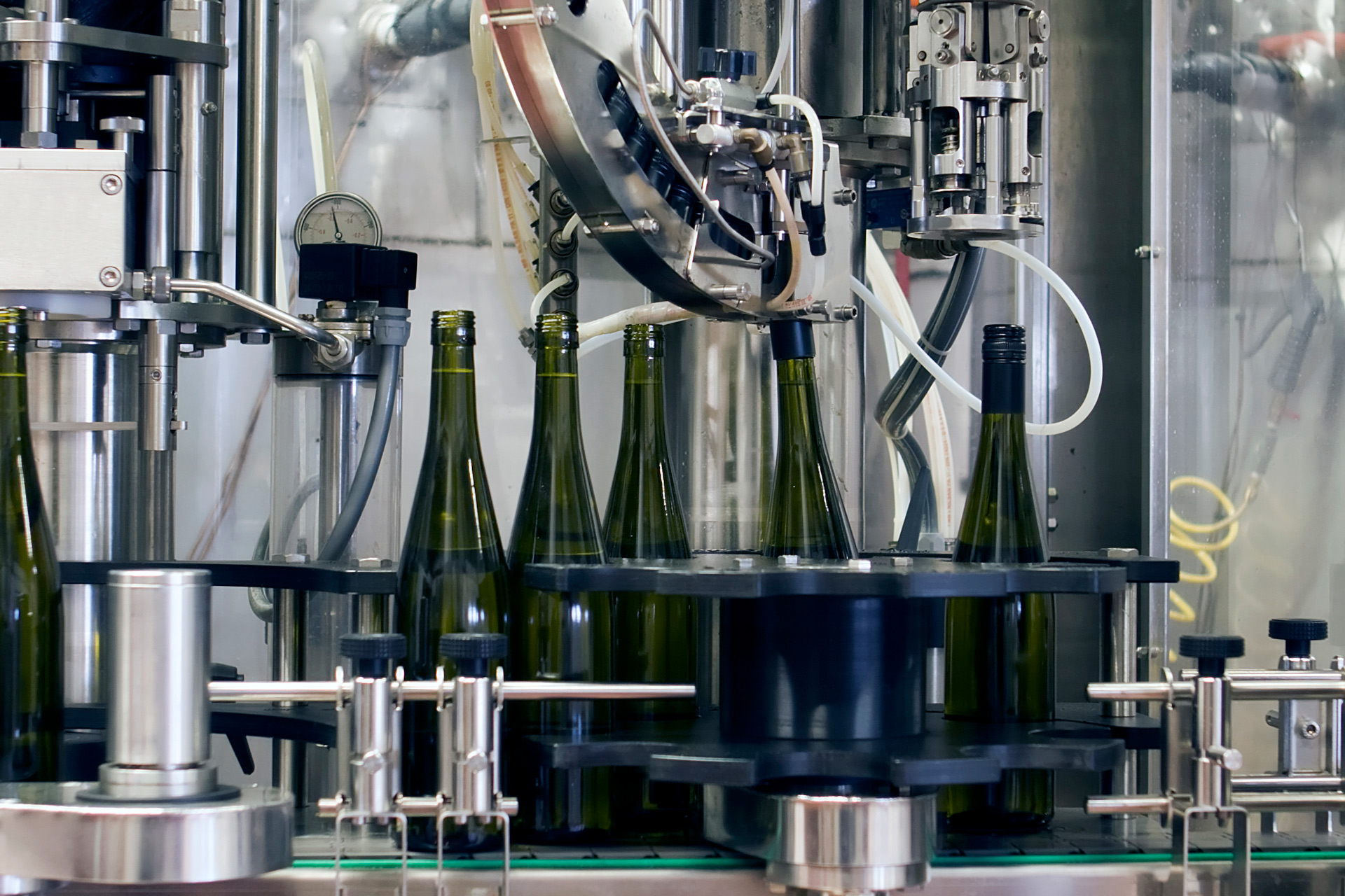 Wine bottles being filled by a machine