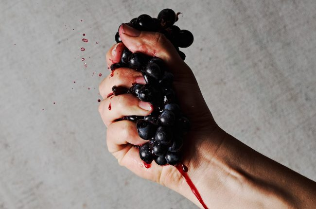 Hand crushing red grapes