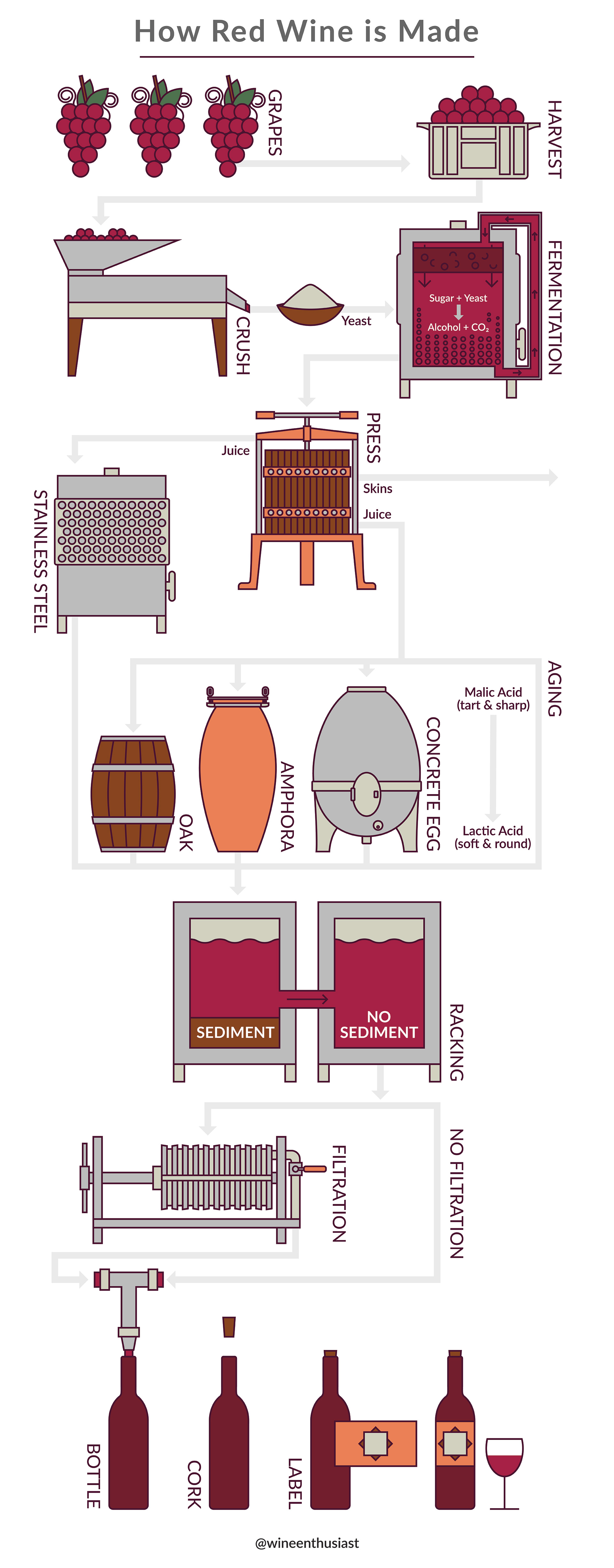 Infographic of the process of making red wine