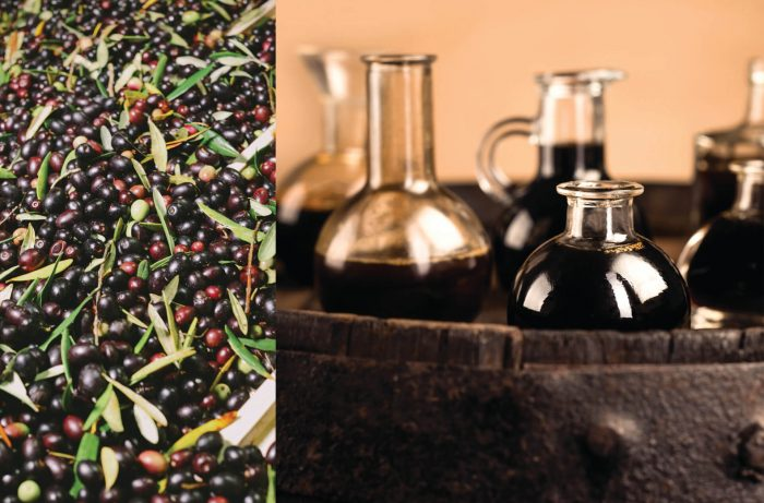 Five Regions Where Wine, Olive Oil and Vinegar Coincide