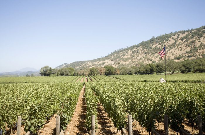 How California Wineries are Dealing with Quarantine