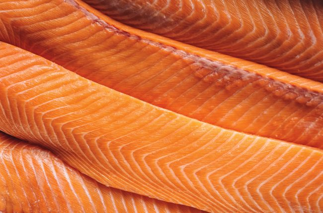 Fresh salmon lox