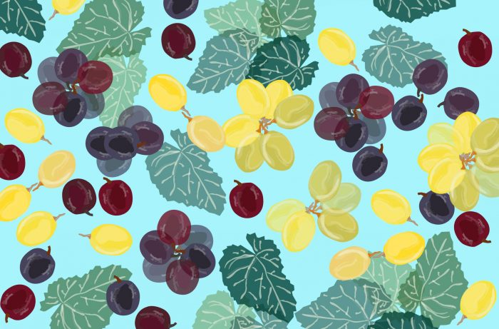 A Beginner's Guide to Hybrid Grapes