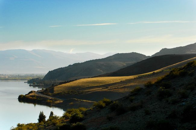 Misha's Vineyard in Central Otago / Photo courtesy Misha's Vineyard
