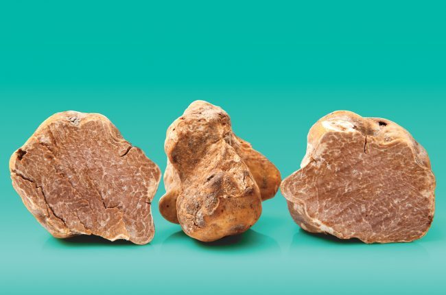 A photo of white truffles