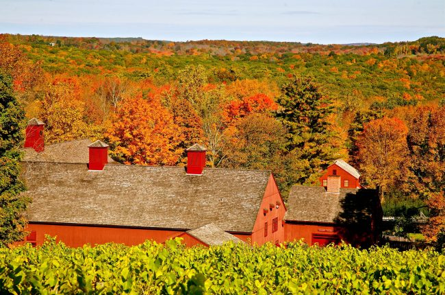 Sharpe Hill Vineyard in Connecticut
