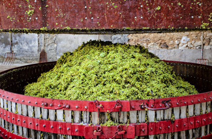 Pressing the grapes with an old press of a Champagne producer near Reims and Epernay.