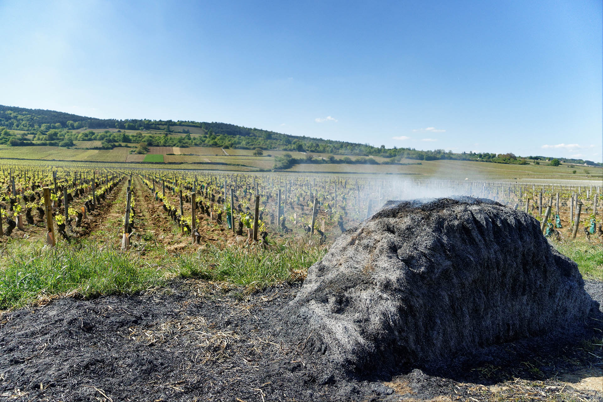 French vineyard frost fires