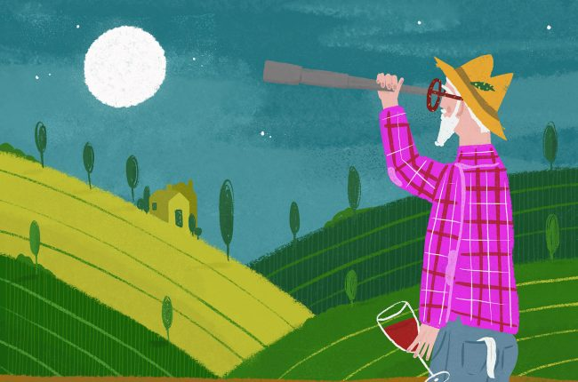 Illustration of man in vineyard holding wine, looking at moon with telescope